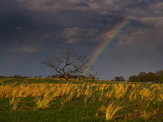 photo credit: An Improbable Rainbow via photopin (license)
